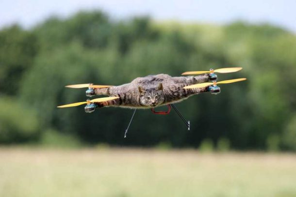 This Project Makes Your Dead Pets Fly By Turning Them Into Drones_Image 2