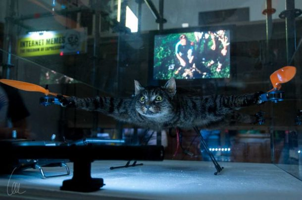 This Project Makes Your Dead Pets Fly By Turning Them Into Drones_Image 6