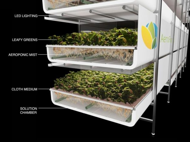 World's Largest Vertical Farm In Newark Grows Without Soil, Sunlight or Water_Image 4