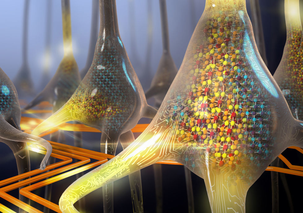 You've Got A Nerve! IBM Builds Artificial Neurons That Fully Mimic Human Brain Cells