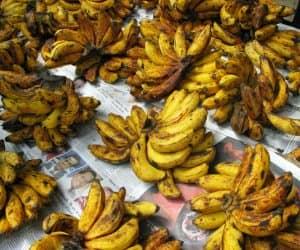 bananageddon-1