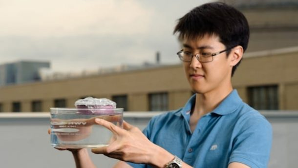 Graduate student and first author of the study George Ni holds the unique sponge-like device that can boil water through the absorption of sunlight (Credit: Jeremy Cho)