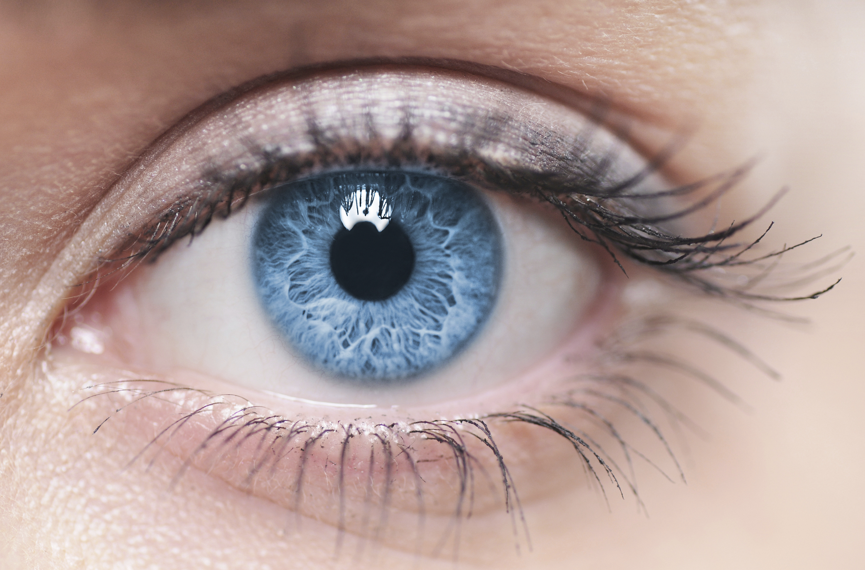 Scientists Have Successfully Grown Artificial Corneas And Transplanted Them Into Living Eyes