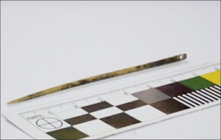 World's Oldest Needle Is 50,000 Years Old And It Was Not Made By Homo Sapiens