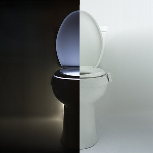 Illumibowl Is The Weirdly Awesome Toilet Of The Future_Image 5