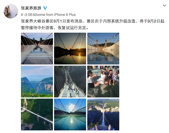 The World's Longest See-Through Zhangjiajie Glass Bridge In China Closes After Just Two Weeks_Image 3