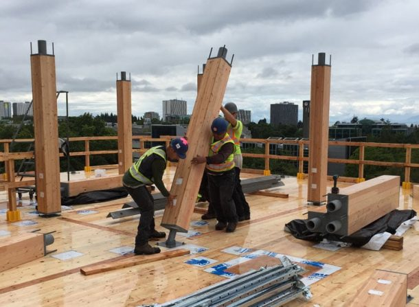 World's Tallest Wooden Residential Tower Nears Completion_Image 2