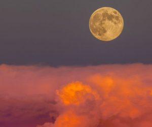 harvest-moon_1024