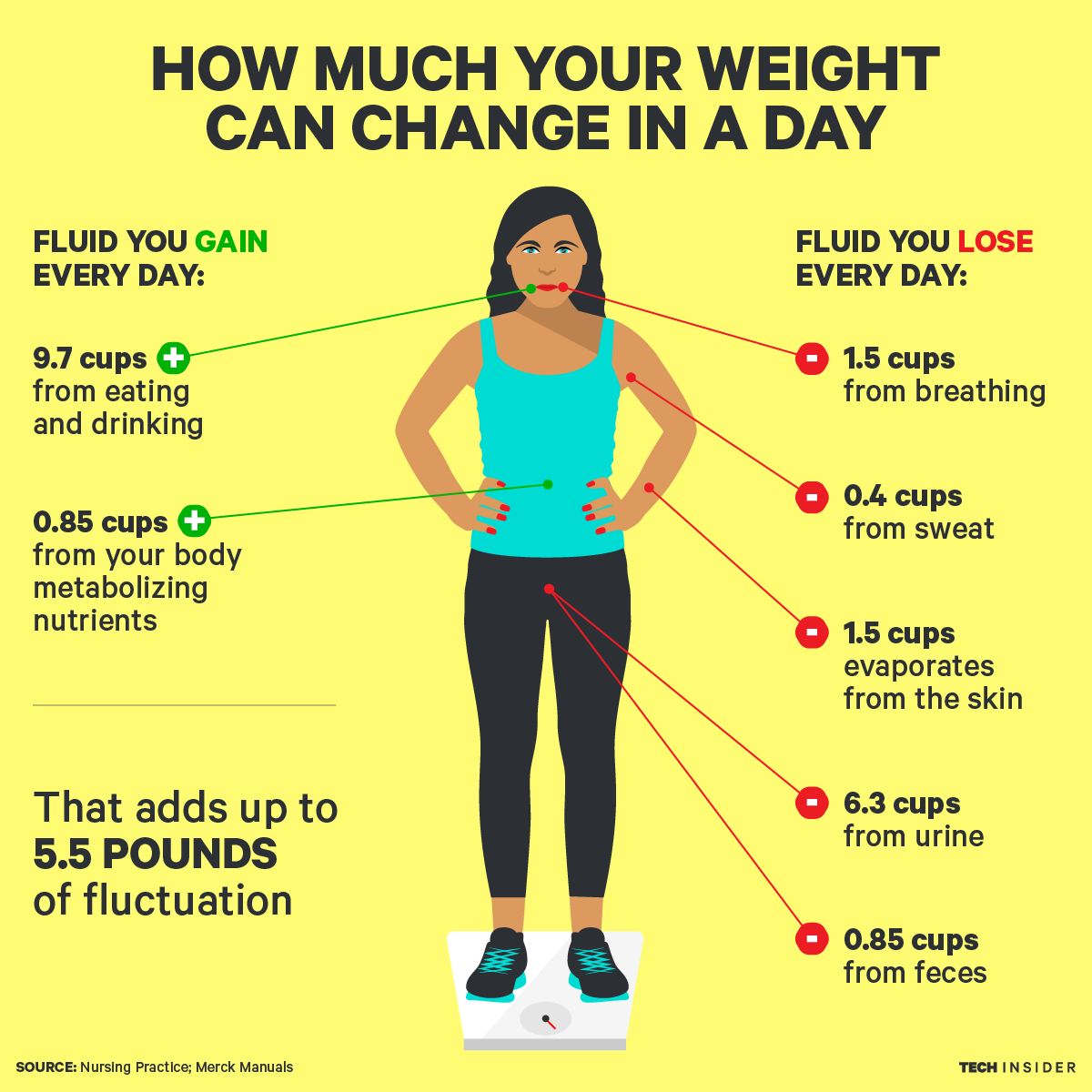 Did You Know That You Lose Weight Every Day? Here Is The Good News