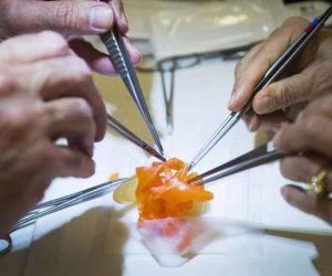 hospitals-are-printing-3-d-hearts-to-help-in-surgeries_image-2