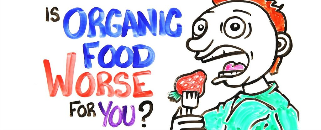 Here Is Why Eating Only Organic Food Is Not Healthy