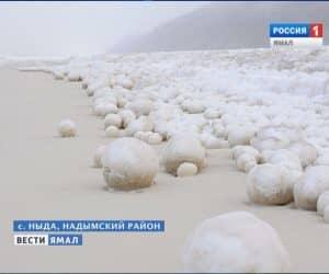 giant-snowballs1