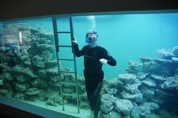 Eli-reef-aquarium2-600x398