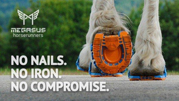 Megasus-Horserunners5-600x338