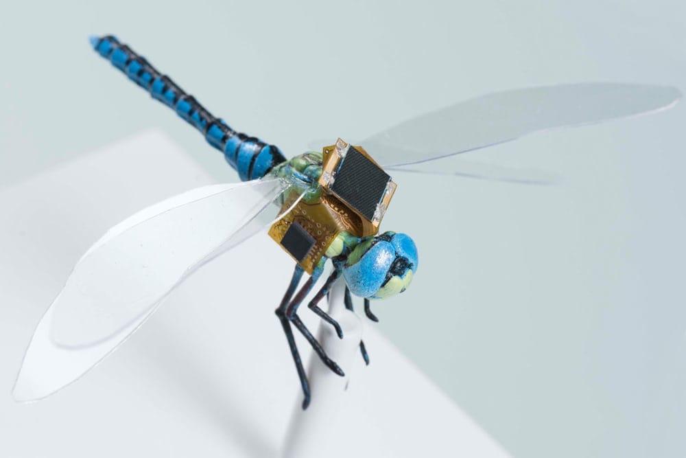 cyborg-dragonflies-1