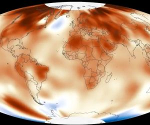 warmest year 2016