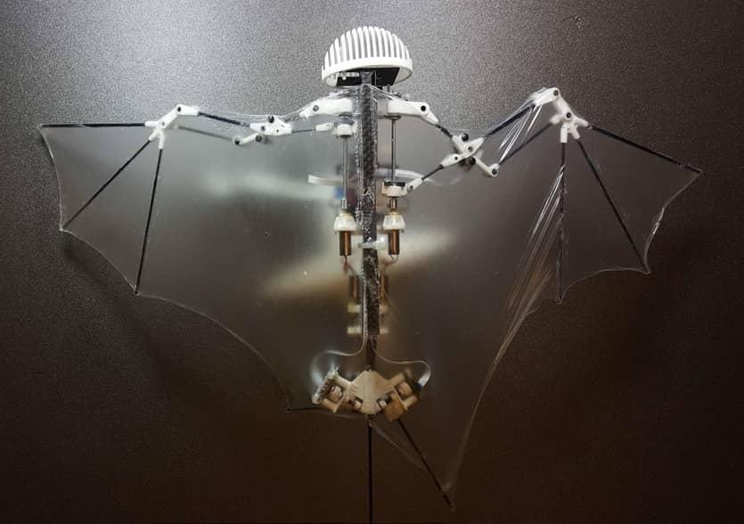 bat bot (3)