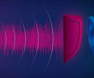 pink noise (1)