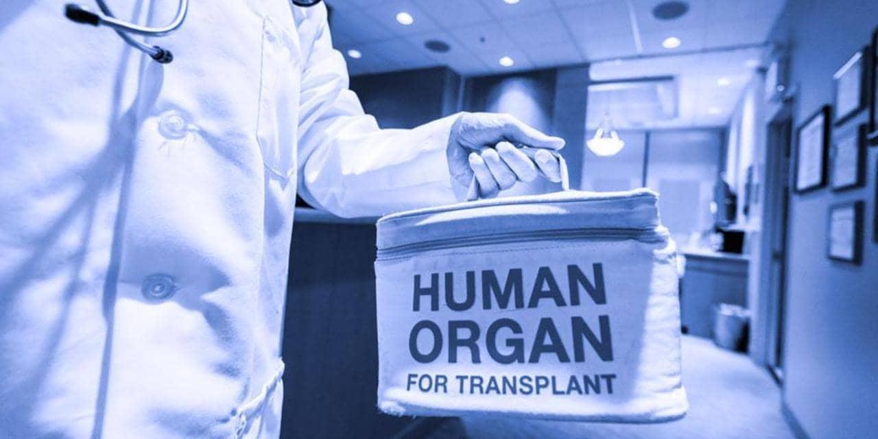 preserving human organs