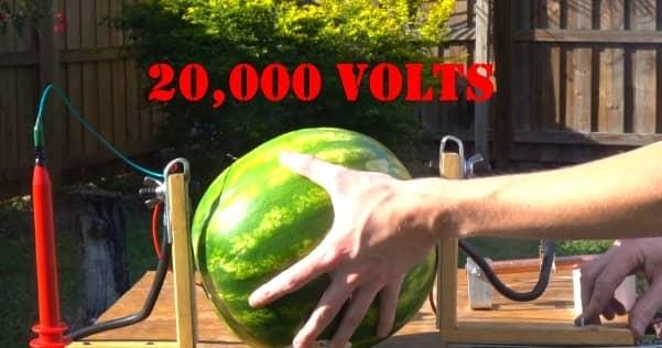 capacitor watermelon