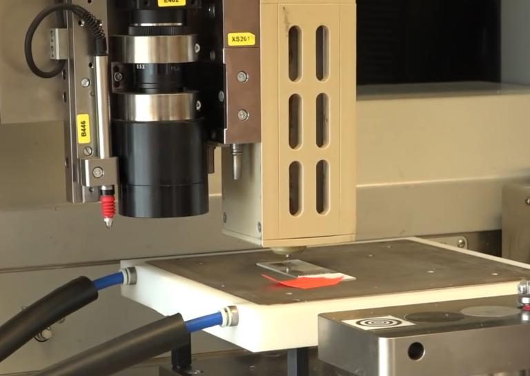 3D Printed Mice Ovary (3)