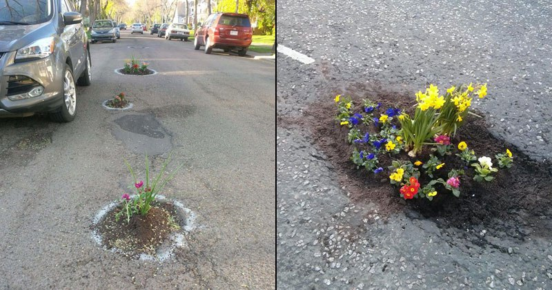 road potholes filled with flowers bath uk343