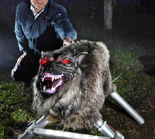 This Super Robot Wolf Serves As A High-Tech Scarecrow In Japan