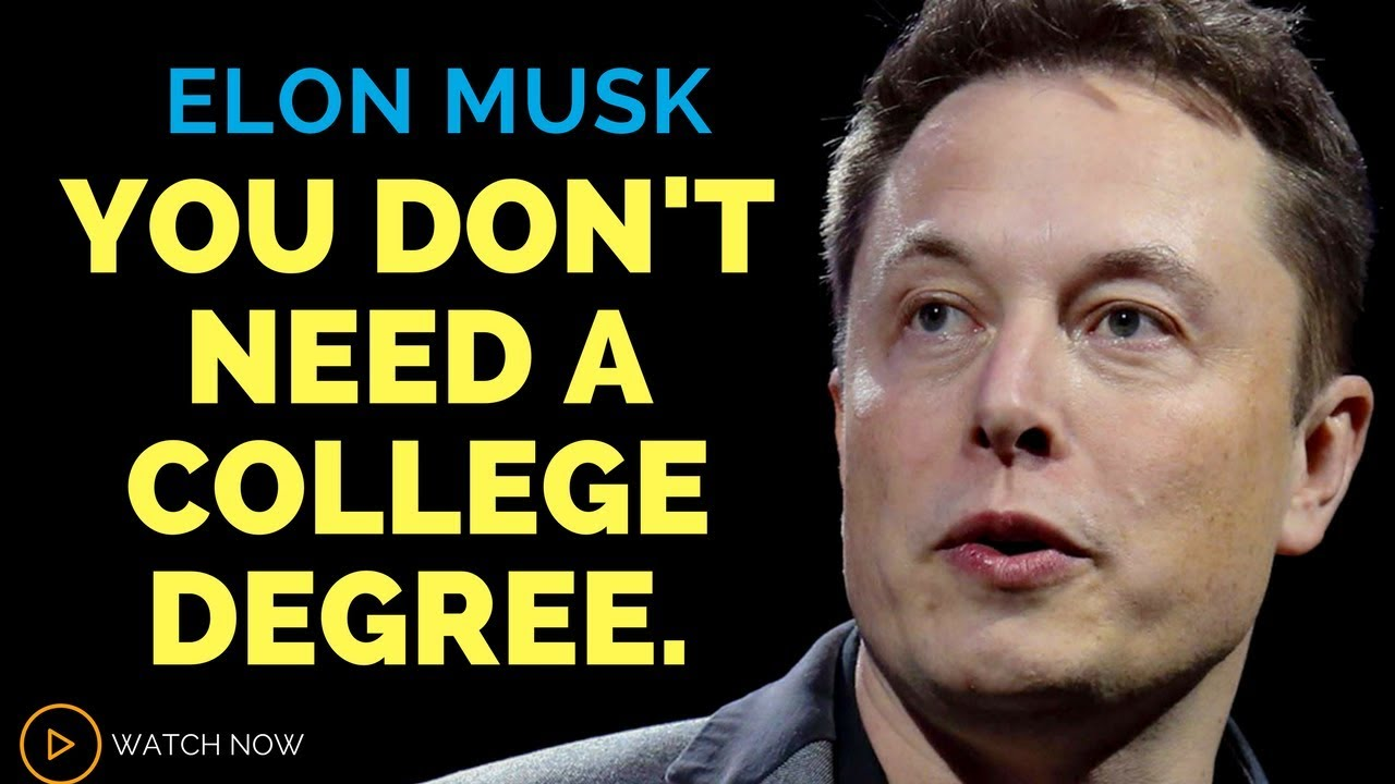this is what elon musk thinks about degrees