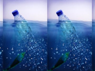 microplastics in water bottles