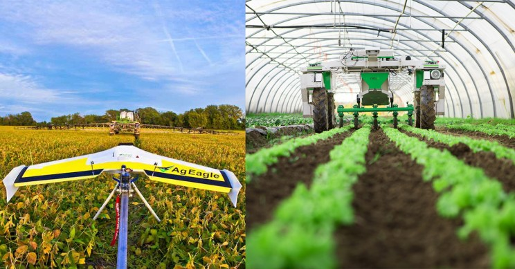 5 Robots That Are Changing Agriculture Forever