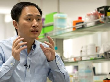 Chinese scientist modified DNA of twin babies produced genetically edited babies