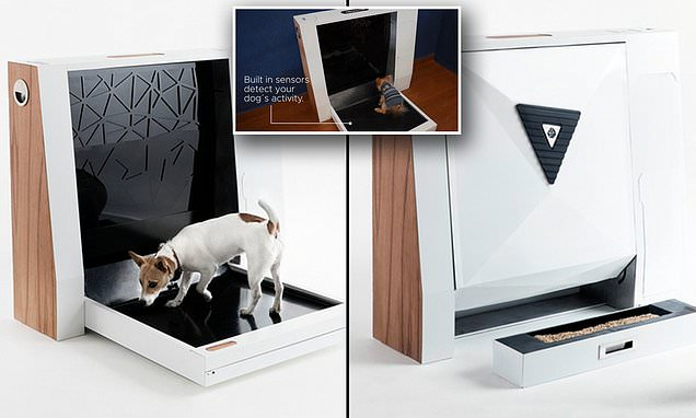Inubox Will Wrap Your Dog Poop And Present It In A Package!