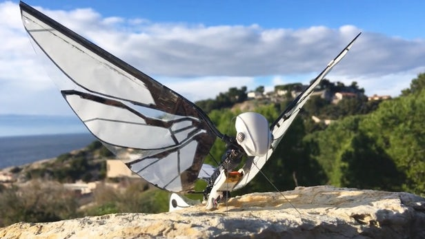 MetaFly Is Your Friendly Neighborhood Flying Robotic Insect