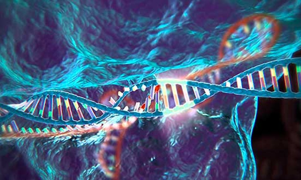 Learn About Gene Editing Technology, CRISPR, In This Video!