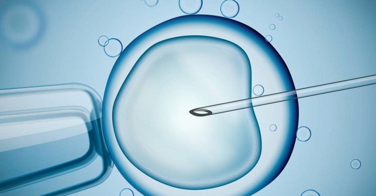 A Baby Was Born Using Mitochondrial Donation Technique In Greece!