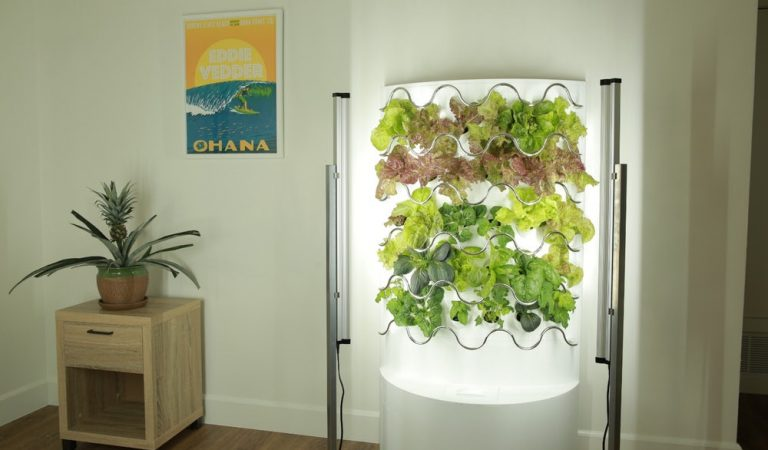 iHarvest Is A Vertical Garden For Your Living Room