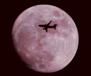 You Can See The Full Pink Moon This Friday!
