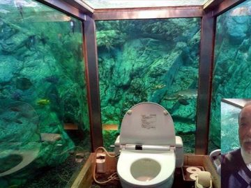 Aquarium Toilet At Hipopo Papa Cafe In Japan Is A Delight!