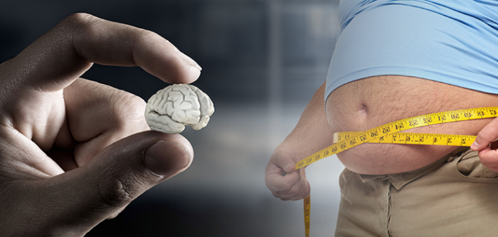 Research Finds Correlation Between Obesity & Shrinking Of Brain!