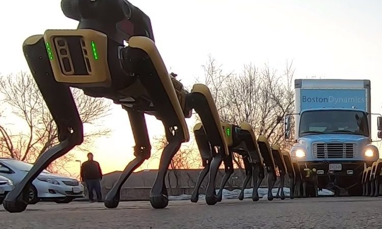 Watch SpotMini Robot Dogs Pull A Truck