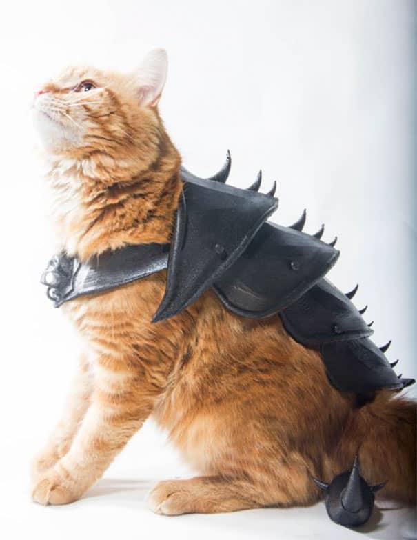 JWall Made 3D Armor For His Orange Tabby Cat Named Bobo