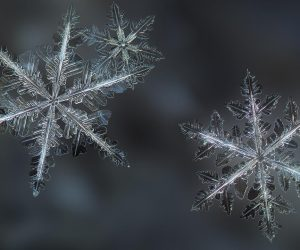 Learn The Reason Why Snowflakes Are Flat In This Video