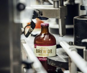 This Is How Gasoline Is Made From Brew Dr Kombucha Tea!