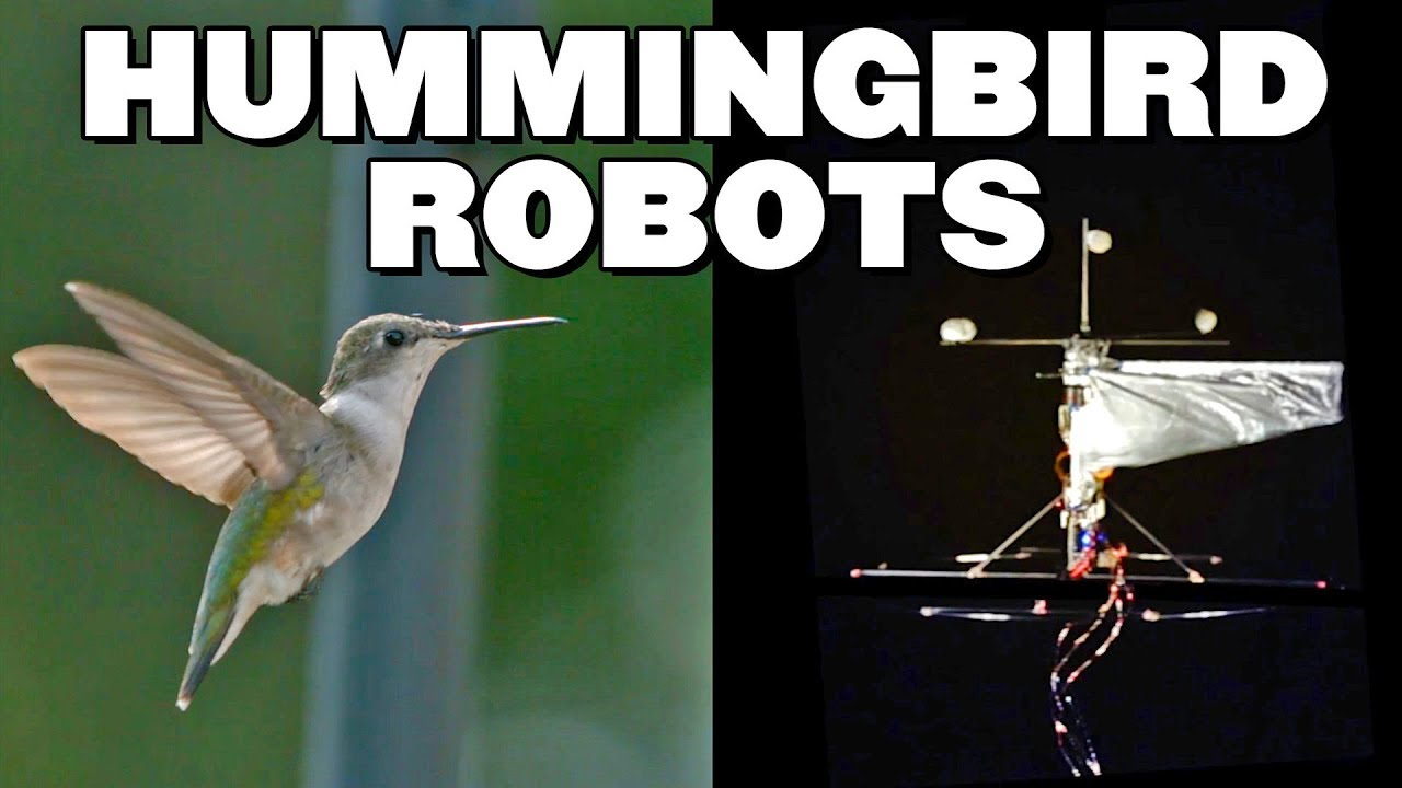 Hummingbird Robot Can Hover & Fly Like An Actual Hummingbird