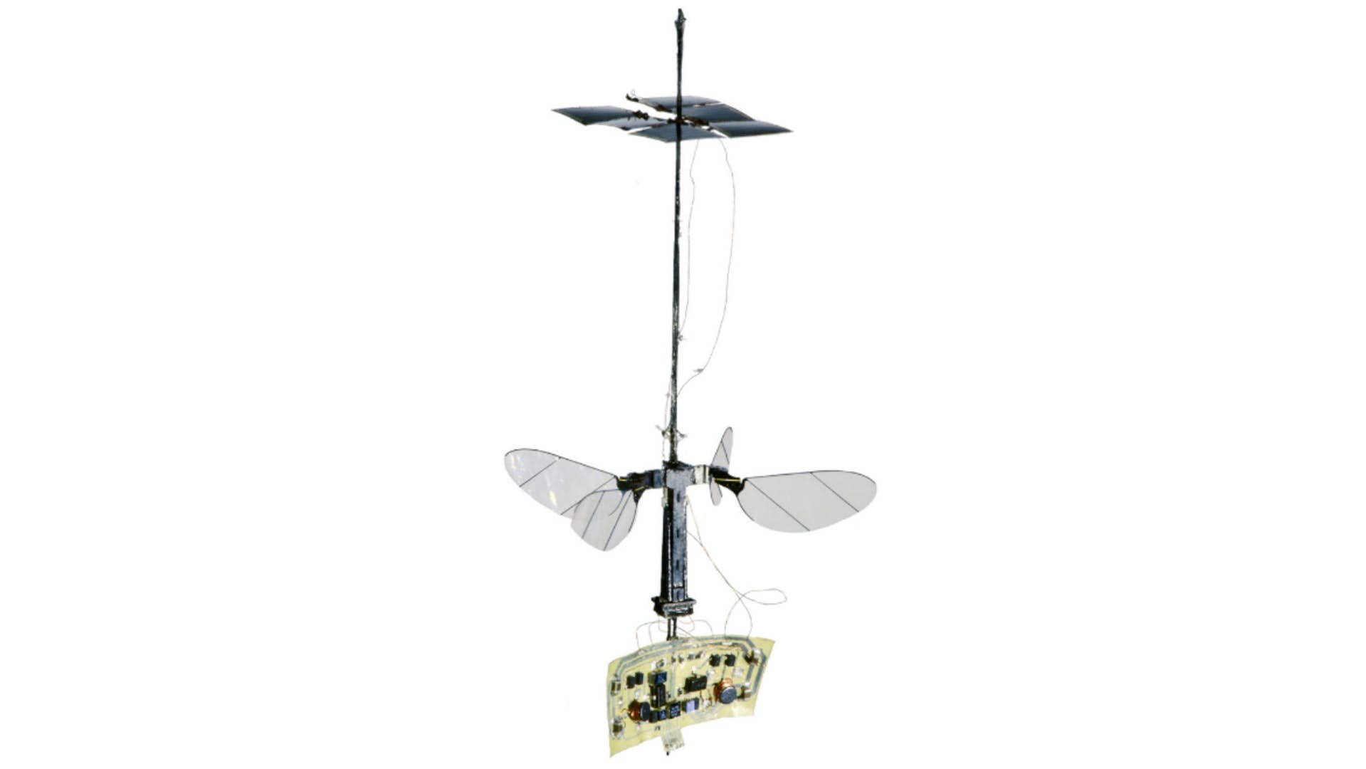 Robobee Was Able To Fly Tether-Free Because Of Tiny Solar Panels