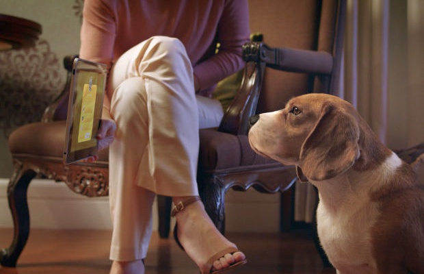 Pet-Commerce Uses AI For Letting Dogs Shop For Toys