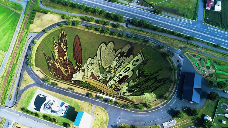 Japanese Farmers Use Rice Paddy Art To Boost Tourism In Inakadate