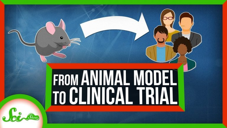 Watch The Journey From Animal Testing To Clinical Trials