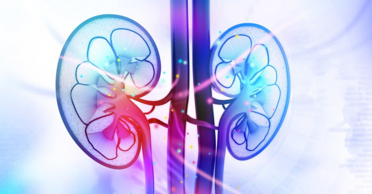 DeepMind AI Used For Predicting Acute Kidney Injury 2 Days Earlier