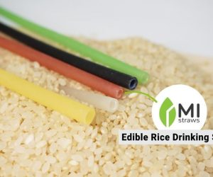 Mistraws Are Eco-Friendly, Edible, Biodegradable, And 100% Natural